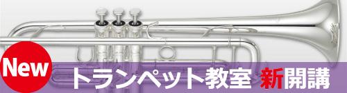trumpet1-01
